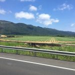 Roadtrip1_iPhone_2017 (26)