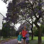 Melbourne_iPhone_2017 (4)